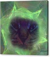Time Warp Cat Canvas Print