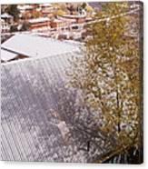 Tin Roof Canvas Print