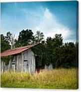 Tin Roof...ivy Covered Barn Canvas Print
