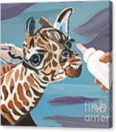 Tiny Baby Giraffe With Bottle Canvas Print