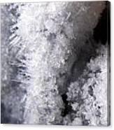 Tiny Ice Canvas Print