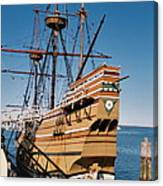 Tiny Mayflower At Plymouth Rock Canvas Print