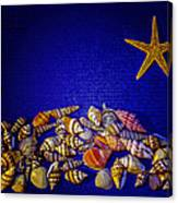 Tiny Sea Shells Canvas Print