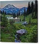 Tipsoo Meadows Canvas Print
