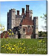 Titchfield Abbey Buttercups Canvas Print