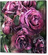 To Be Loved - Mauve Rose Canvas Print
