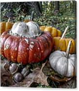 To Swell The Gourd Canvas Print