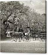 To The Stables Canvas Print