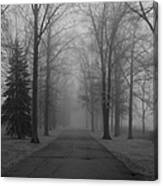 To Where It Leads  Bw Canvas Print