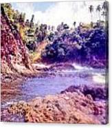 Tobago  Canvas Print