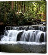 Tolliver Falls Maryland Canvas Print