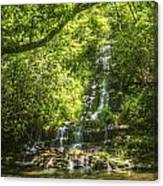 Tom Branch Falls Canvas Print