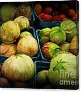 Tomatillos Canvas Print