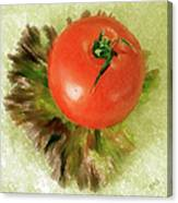 Tomato And Lettuce Canvas Print