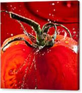 Tomato Freshsplash 2 Canvas Print