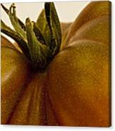 Tomato Macro Canvas Print
