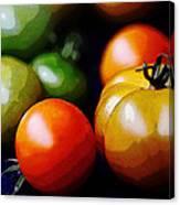 10044 Tomatoes Canvas Print