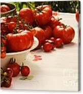 Tomatoes Tomatoes Canvas Print