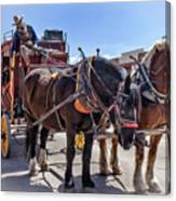 Tombstone Stagecoach 2 Canvas Print