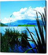 Tongariro National Park Oil On Canvas Canvas Print