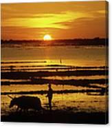Tonle Sap Sunrise 01 Canvas Print