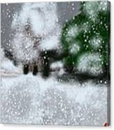 Too Close To Winter Canvas Print