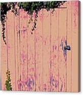 Tool Shed Two Canvas Print