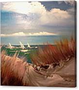 Top Of The Dune Canvas Print