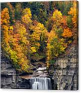 Top Of The Falls Canvas Print