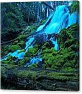 Top Part Of Clearwater Falls Canvas Print