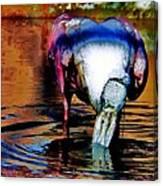 Toupee Canvas Print