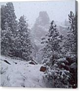 Towards Top Of Bear Peak Mountain During Intense Snow Storm - North Side Canvas Print