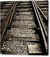 Tracks Into Tracks - 2 Canvas Print
