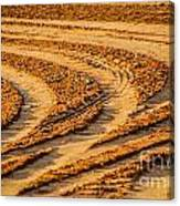 Tractor Tracks Canvas Print