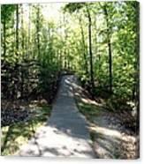 Trail Around Lake Johnson Canvas Print