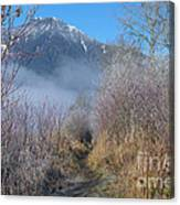 Trail At Grant Narrows Regional Park Canvas Print