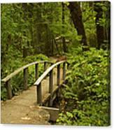 Trail Bridge Toketee 1 Canvas Print