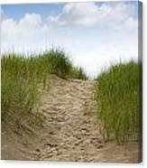 Trail Over The Dune To The Summer Beach Canvas Print
