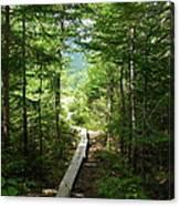 Trail To Sandy Stream Pond Canvas Print