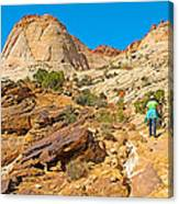 Trail Up To The Tanks From Capitol Gorge Pioneer Trail In Capitol Reef National Park-utah Canvas Print