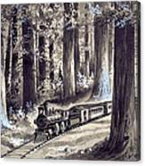 Train In The Redwoods Canvas Print