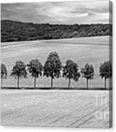 Train With A View Bw Canvas Print