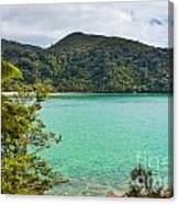 Tranquil Bay In Abel Tasman Np In New Zealand Canvas Print