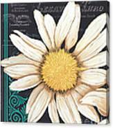 Tranquil Daisy 2 Canvas Print