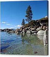 Tranquil Tahoe Beach Canvas Print