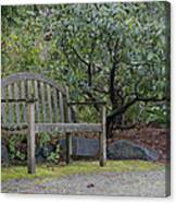 Tranquility  Canvas Print