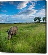 Tranquility On The Plains Canvas Print