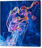 Transcendence - Abstract Art Photography Canvas Print