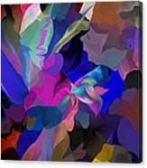 Transcendental Altered States Canvas Print