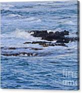 Treacherous Shorebreak Canvas Print
